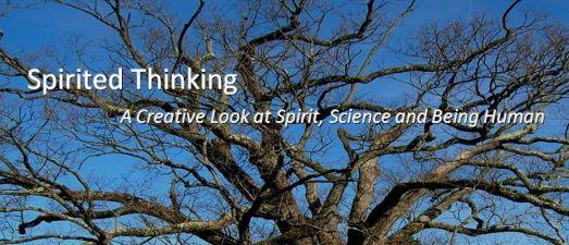 Tree for newsletter