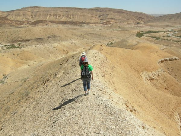 Geologists in the Negev Desert