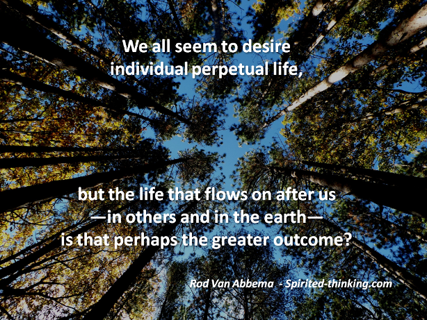 We all seem to desire individual perpetual life, but the life that flows on after us—in others and in the earth—is that perhaps the greater cause for joy?