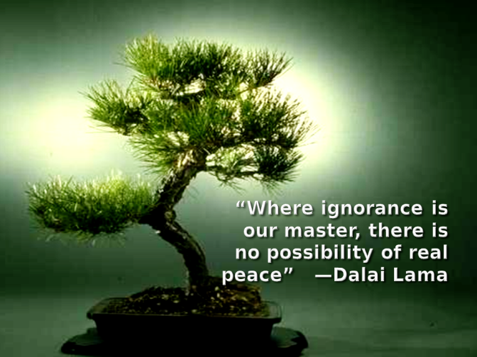 """Where ignorance is our master, there is no possibility of real peace"" — Dalai Lama """