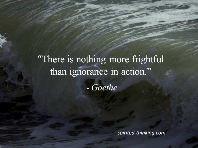 """There is nothing more frightful than ignorance in action."" - Goethe """